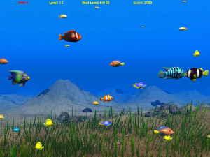 SeaFishSubmit