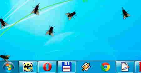 fly_on_desktop