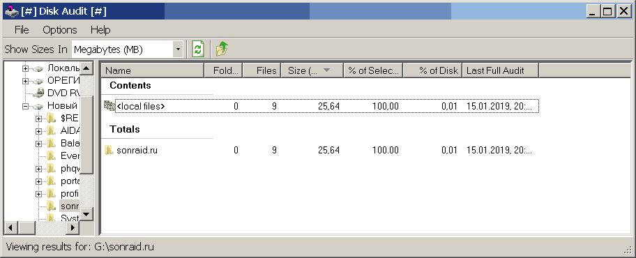 Disk Audit