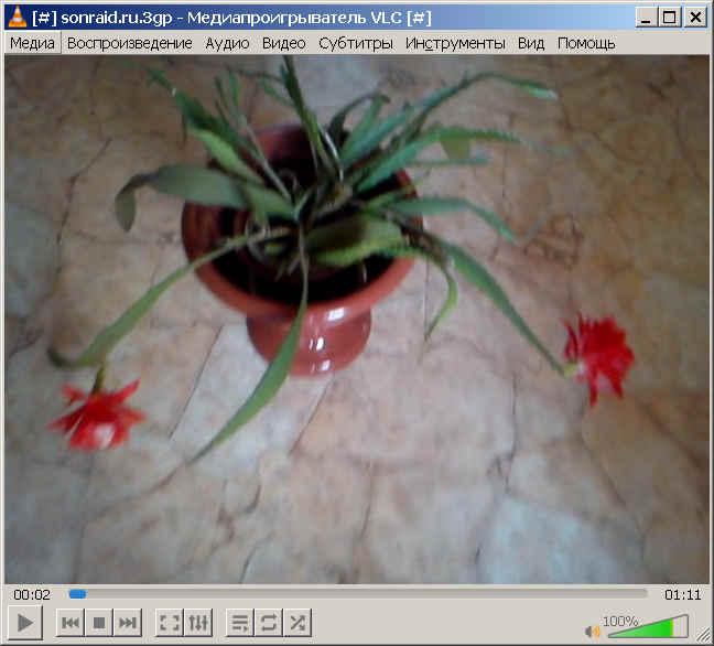 VLC media player 3.0.11