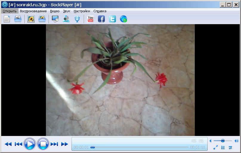 SockPlayer 2.1.4